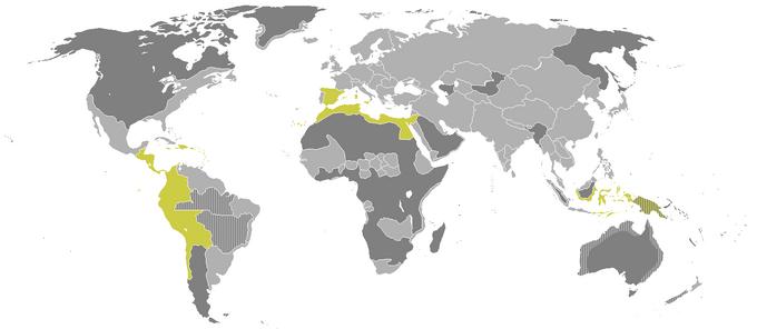 Испания-1642-0