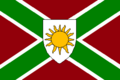 (ssd)flag of dixie