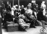 Bundesarchiv przesiedlenia niemcy 970