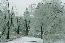 Quebecicestorm1998