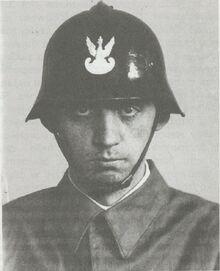 Helm polski wz. 28