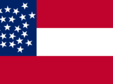 Flag of the Confederate States (Dixie Forever)