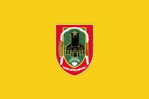 File:South Kalimantan flag.png