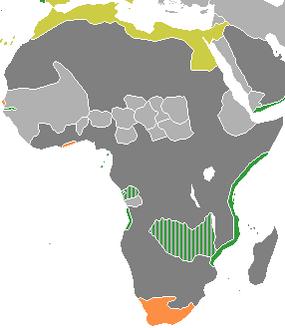 Колонизация Африки