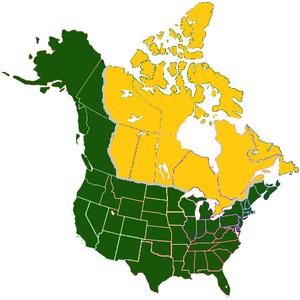 American land deal Avaro