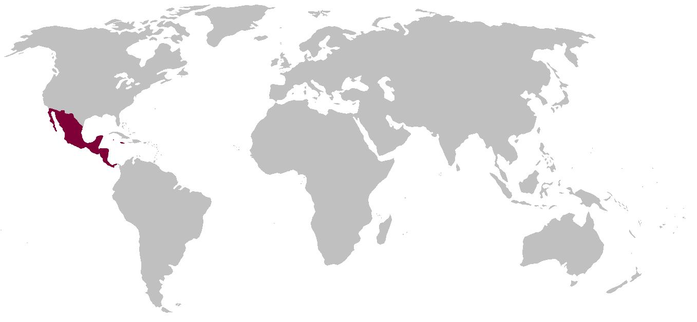 Aztec Empire (Byzantine Glory)   Alternative History   FANDOM