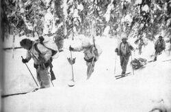 Ski-troops