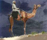 CamelSword