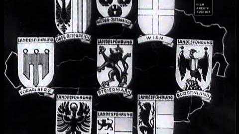 Die Vaterländische Front (VF)-0
