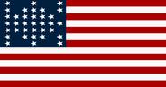 Flag 844