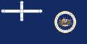 Flag of the Chancellor of Cygnia