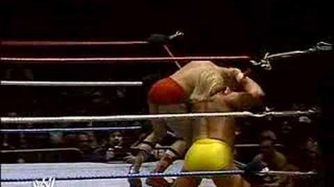 Hulk Hogan vs the Iron Sheik for the WWE championship.