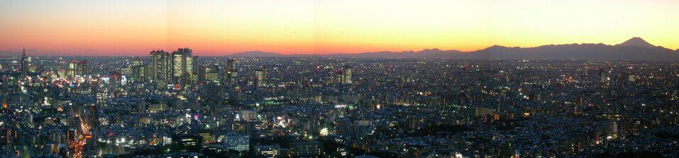 JPN Tokyo Pan 01 (VegWorld)