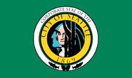 Alt Seattle 2