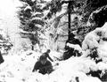 Americans in bastogne.PNG