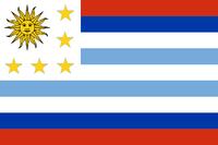 Bandera del Cono Sur (UA)