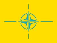 PITO flag.png