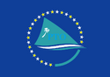 PTO flag.png