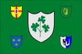 800px-IRFU flag svg.png
