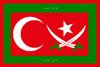 Flag of islamic Turkey