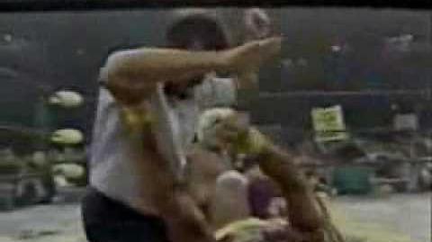 Hulk hogan vs ric flair wcw title pt 2