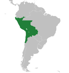 Peru-1912