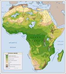 Zielona sahara