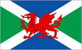 Celtic Flag.png