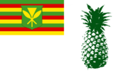 PineappleFlag Eman