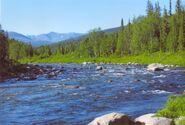 River near Saranpaul
