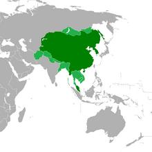 Axis China Map