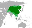 Xian Dynasty (Russian America)