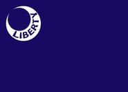 Flag 855