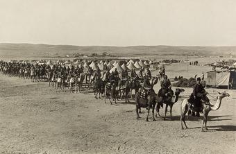 Египетская кавалерия