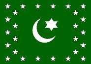 Flag 479