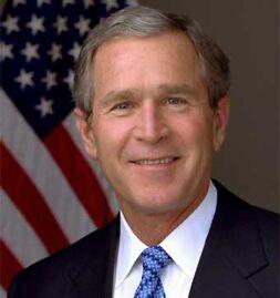 Bush hijo