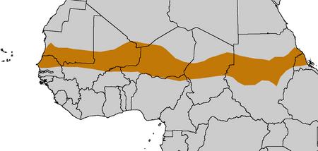 800px-Sahel Map-Africa rough