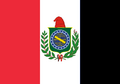 New flag of brazil (jnw).png