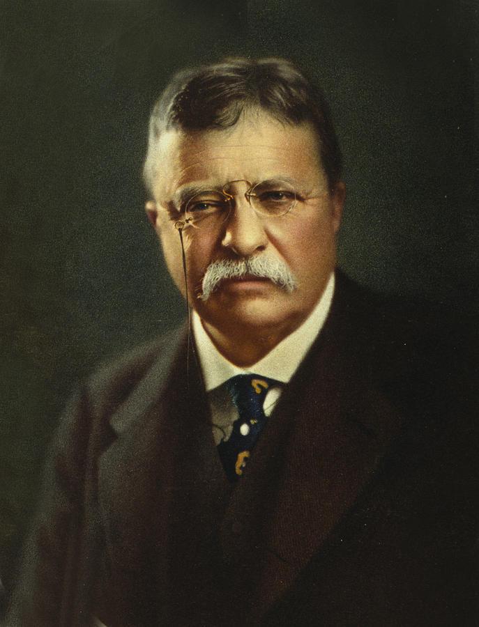 Theodore And Bella Card: Theodore Roosevelt (Cherry, Plum, And Chrysanthemum