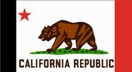 California state flag TMNA
