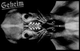 AlienRöntgen1944