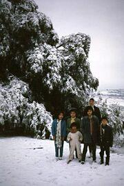 Atizapan 1967 nieve