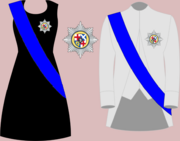 Ceremonial and protocol clothing protector