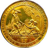 В честь победы над Шведорусскотурецкой гидрой