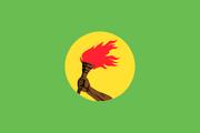 Флаг Заира