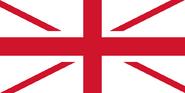 Flag 771