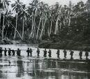 Melanesian War (Regnum Bueno)