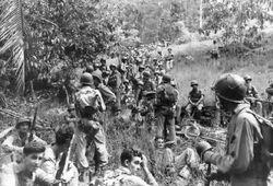 Confederate troops at Haiti