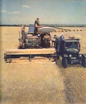 Сбор урожая-0