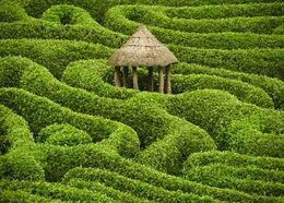 LabyrinthJap